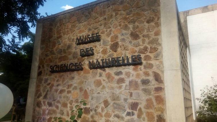 Musée des sciences naturelles à Lubumbashi, une première en RDC