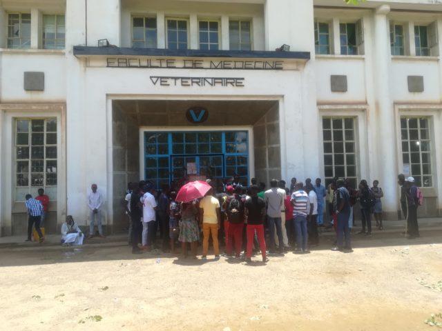 Lubumbashi-UNILU: Les étudiants de médecine vétérinaire réclament la ferme Naviundu