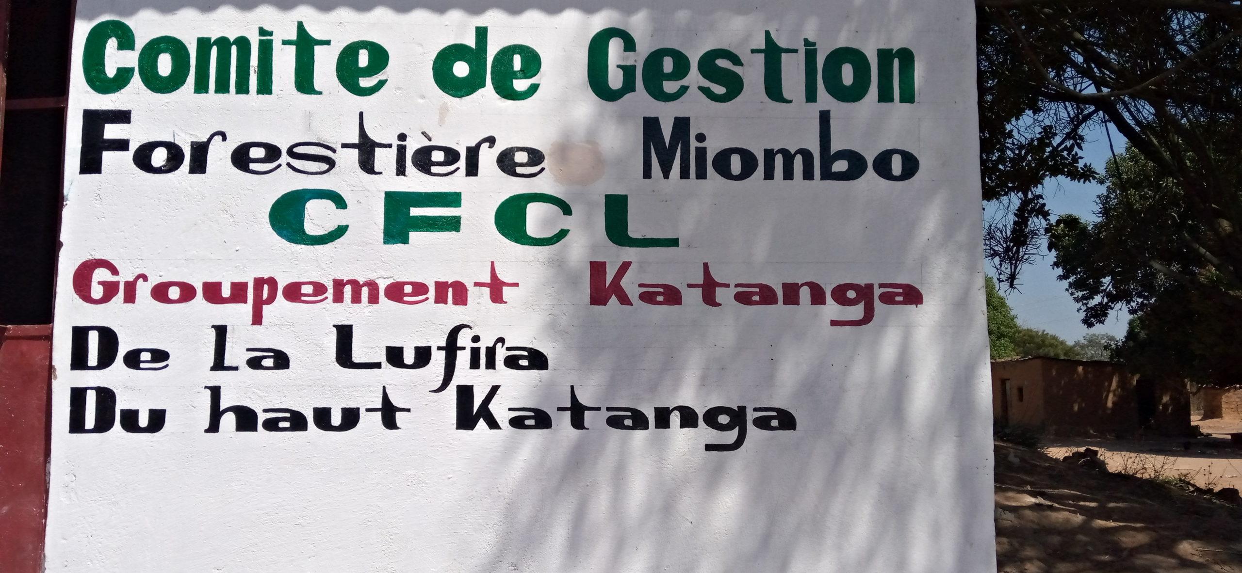 RDC: 30 communautés se mobilisent pour la gestion de la foret de Miyombo