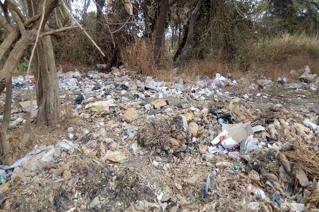 Lubumbashi entend commander des emballages biodégradables auprès d'une firme Zimbabweenne.