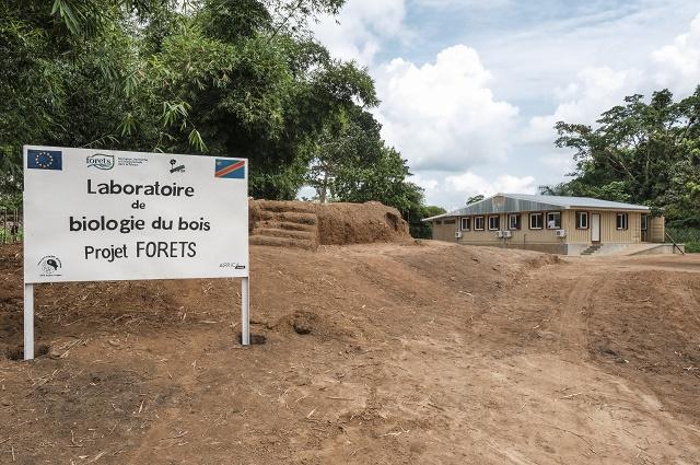 RDC : ouverture d'un laboratoire de biologie du bois à Yangambi