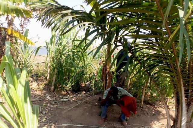 Lualaba: les oubliés de Busanga abandonnent leurs champs et habitations inondés par Sichohydro